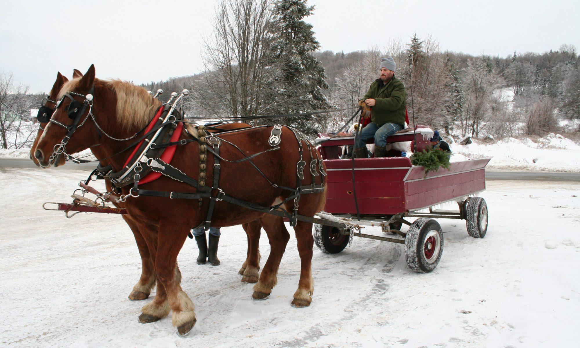 VT Wagon Rides